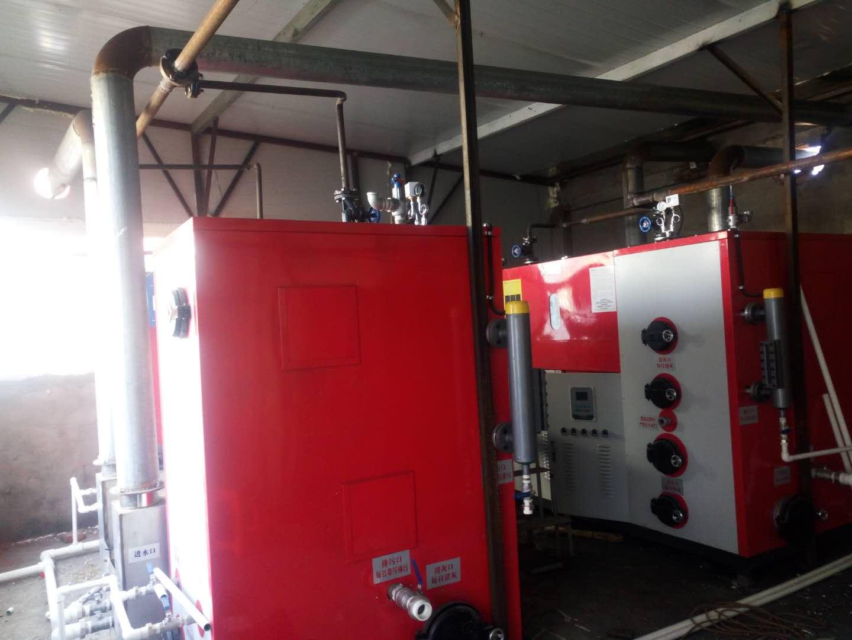 生物质蒸汽发生器2
